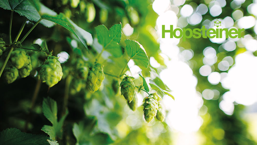 Hops (Source: Hopsteiner)